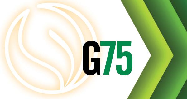 green main 0614 resized 600