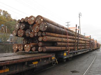 Wood poles