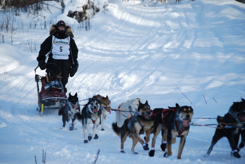 Jr. Iditarod - Guillermo Anton from Spain
