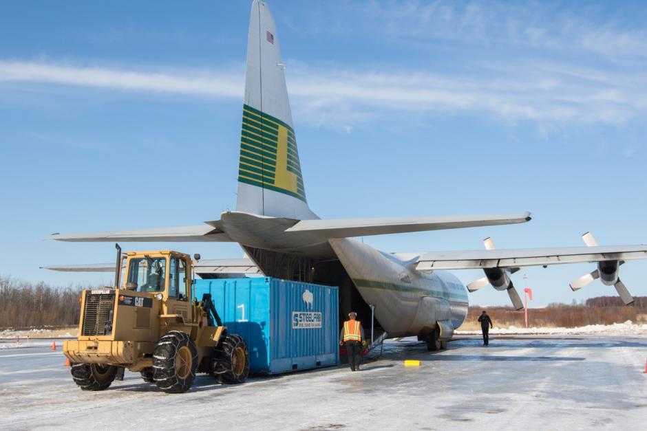 Wood Bison - Lynden Air Cargo